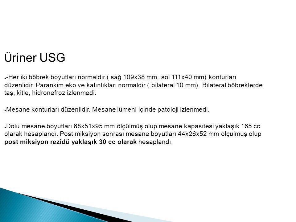 Ü riner USG ● - Her iki böbrek boyutları normaldir.( sağ 109x38 mm, sol 111x40 mm) konturları düzenlidir.