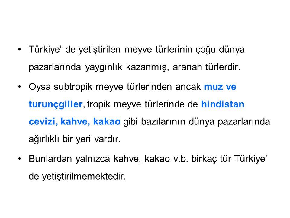 Türkiye' de yetiştirilen meyve türlerinin çoğu dünya pazarlarında yaygınlık kazanmış, aranan türlerdir.
