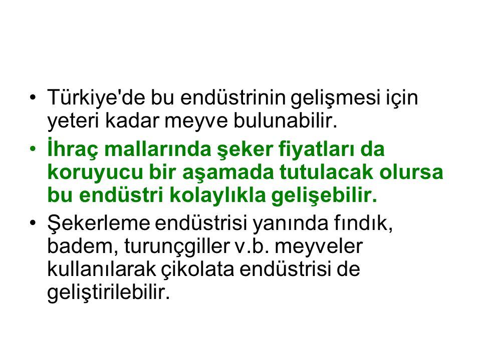 Türkiye de bu endüstrinin gelişmesi için yeteri kadar meyve bulunabilir.