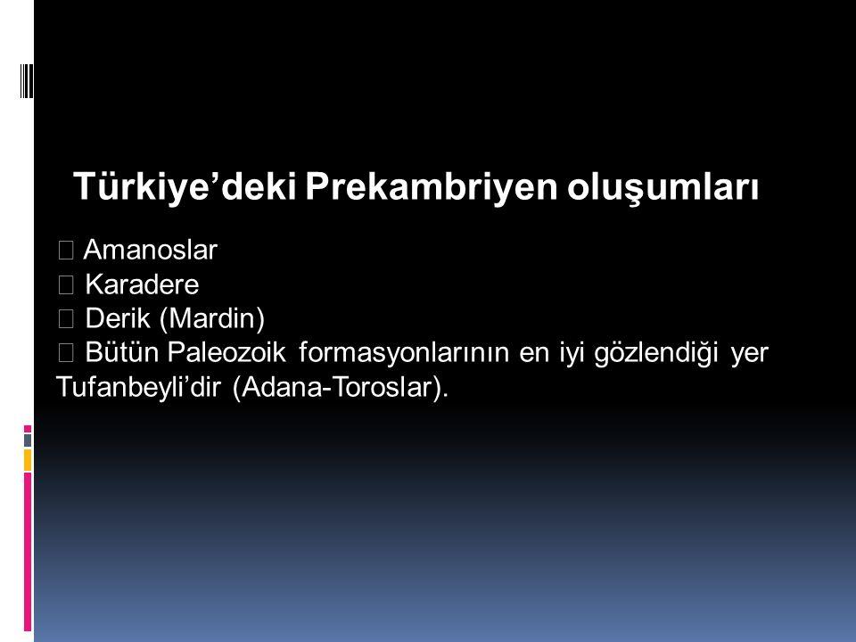 Amanoslar  Karadere  Derik (Mardin)  Bütün Paleozoik formasyonlarının en iyi gözlendiği yer Tufanbeyli'dir (Adana-Toroslar). Türkiye'deki Prekamb