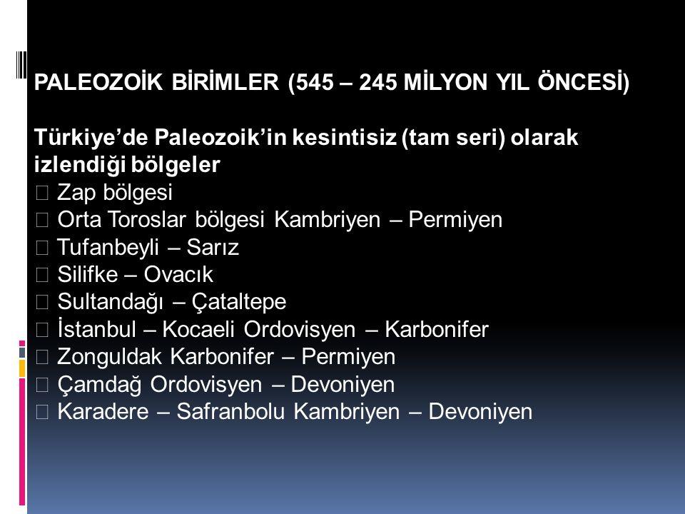 PALEOZOİK BİRİMLER (545 – 245 MİLYON YIL ÖNCESİ) Türkiye'de Paleozoik'in kesintisiz (tam seri) olarak izlendiği bölgeler  Zap bölgesi  Orta Toroslar bölgesi Kambriyen – Permiyen  Tufanbeyli – Sarız  Silifke – Ovacık  Sultandağı – Çataltepe  İstanbul – Kocaeli Ordovisyen – Karbonifer  Zonguldak Karbonifer – Permiyen  Çamdağ Ordovisyen – Devoniyen  Karadere – Safranbolu Kambriyen – Devoniyen
