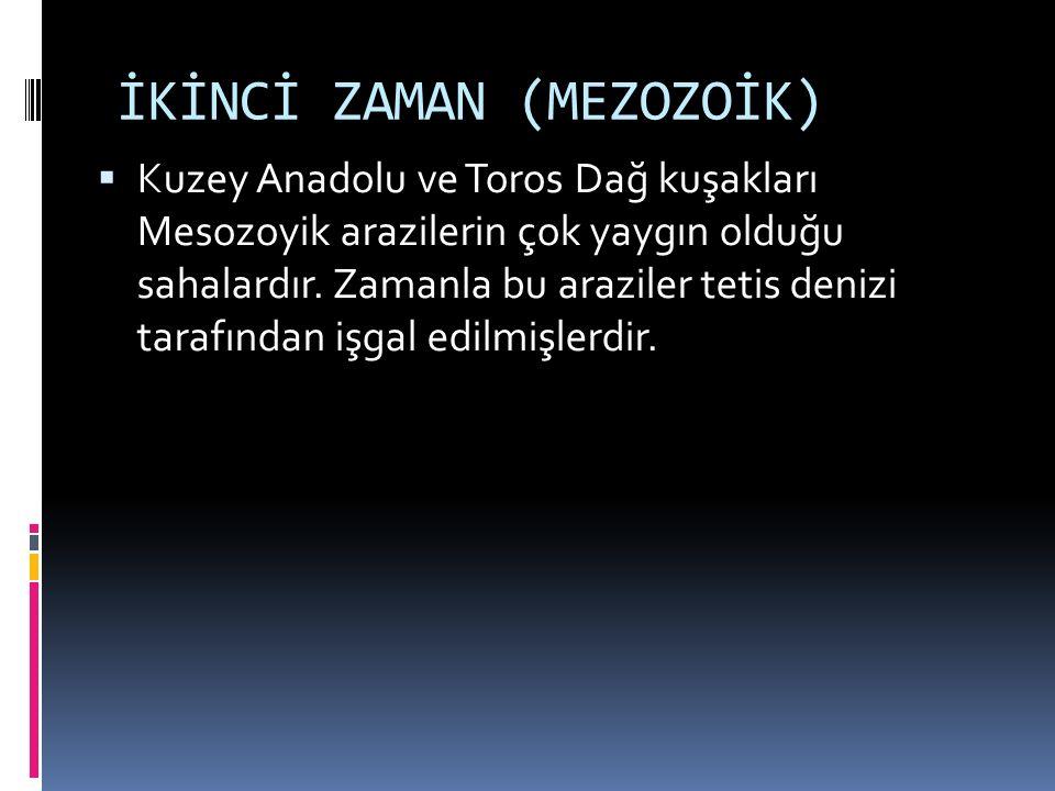 İKİNCİ ZAMAN (MEZOZOİK)  Kuzey Anadolu ve Toros Dağ kuşakları Mesozoyik arazilerin çok yaygın olduğu sahalardır.