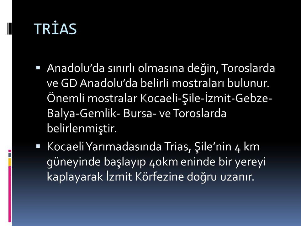 TRİAS  Anadolu'da sınırlı olmasına değin, Toroslarda ve GD Anadolu'da belirli mostraları bulunur. Önemli mostralar Kocaeli-Şile-İzmit-Gebze- Balya-Ge