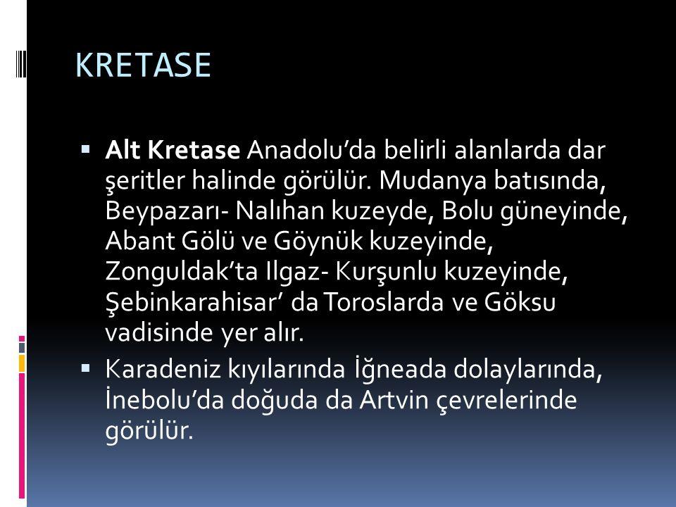 KRETASE  Alt Kretase Anadolu'da belirli alanlarda dar şeritler halinde görülür. Mudanya batısında, Beypazarı- Nalıhan kuzeyde, Bolu güneyinde, Abant