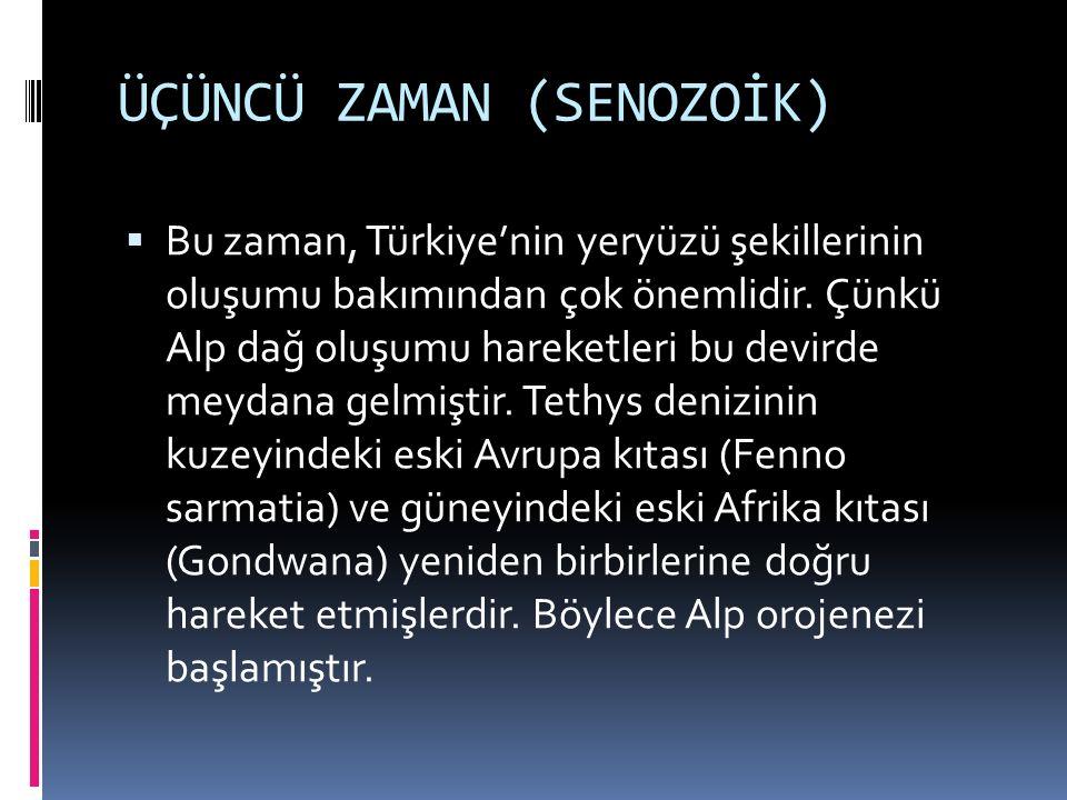 ÜÇÜNCÜ ZAMAN (SENOZOİK)  Bu zaman, Türkiye'nin yeryüzü şekillerinin oluşumu bakımından çok önemlidir. Çünkü Alp dağ oluşumu hareketleri bu devirde me