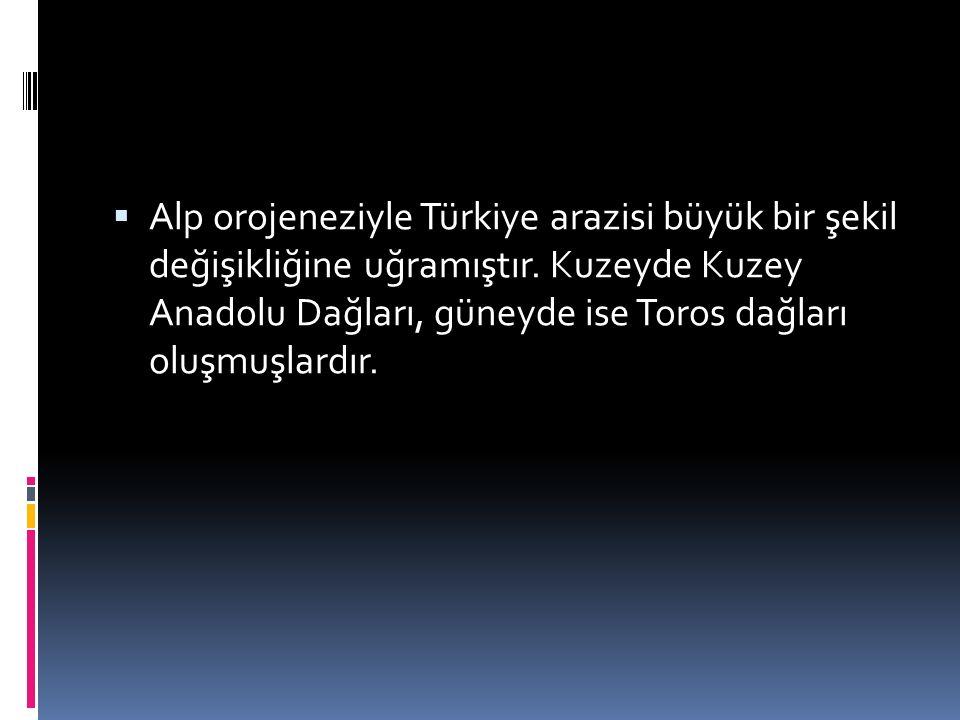  Alp orojeneziyle Türkiye arazisi büyük bir şekil değişikliğine uğramıştır.