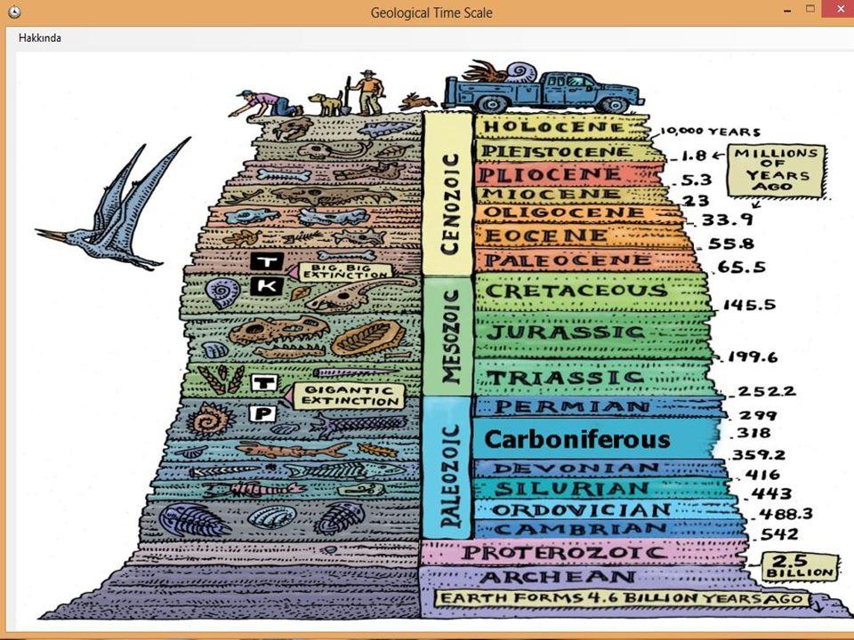  Alüvyal arazi : Akarsu biriktirmesi sonucu oluşan arazi alüvyal arazidir.