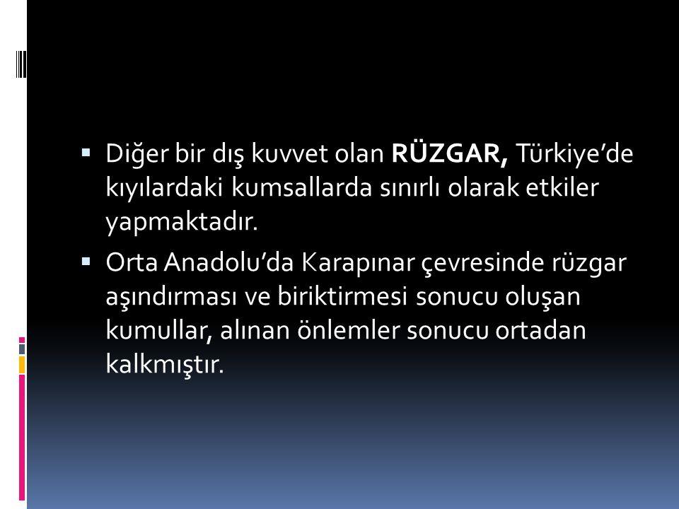  Diğer bir dış kuvvet olan RÜZGAR, Türkiye'de kıyılardaki kumsallarda sınırlı olarak etkiler yapmaktadır.