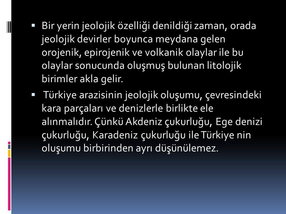 TÜRKİYE'NİN MASİF ALANLARI