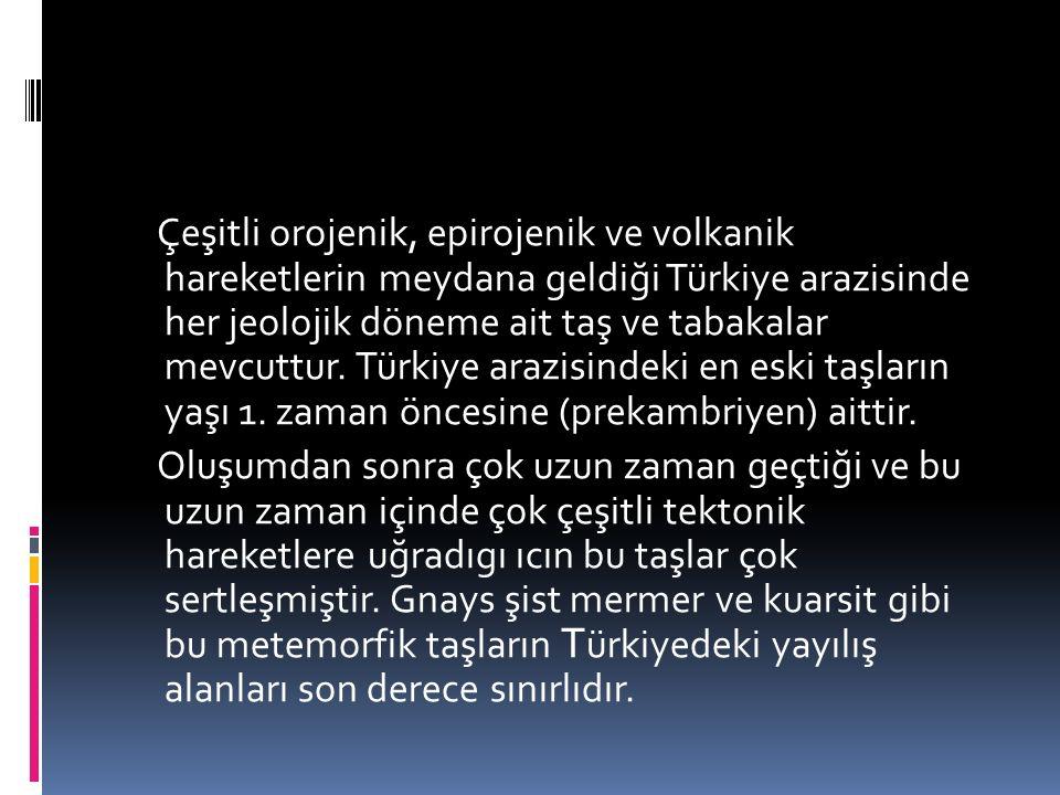 TÜRKİYE'NİN JEOLOJİK ÖZELLİKLERİ Birinci Zaman: PALEOZOİK Türkiye'nin bulunduğu yerde Tetis Ara Denizi bulunuyordu.
