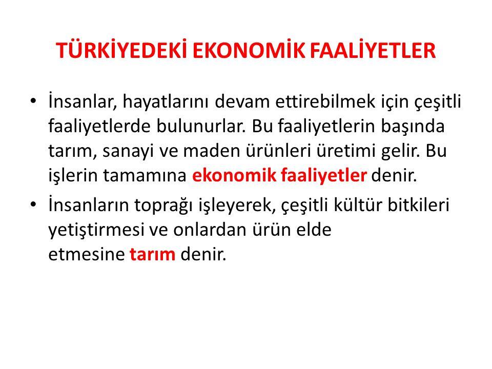 TARIM Buğday:Kışların aşırı soğuk geçmediği yerlerde sonbaharda, Doğu Anadolu'nun soğuk yerlerinde ilkbaharda ekilir.