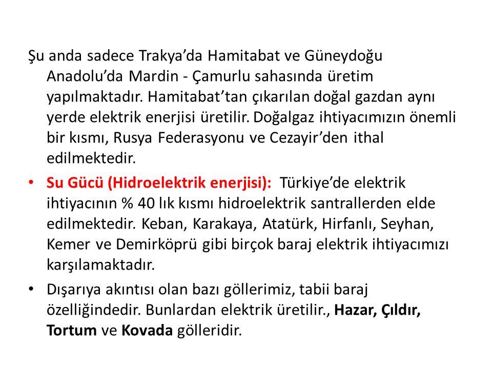 Şu anda sadece Trakya'da Hamitabat ve Güneydoğu Anadolu'da Mardin - Çamurlu sahasında üretim yapılmaktadır.