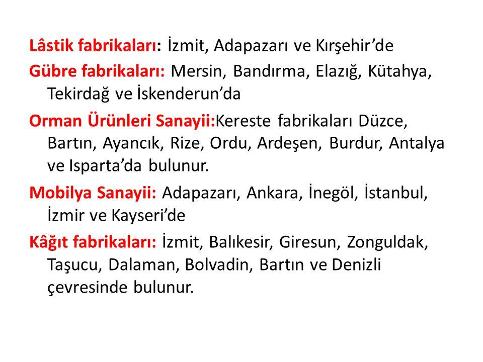 Lâstik fabrikaları: İzmit, Adapazarı ve Kırşehir'de Gübre fabrikaları: Mersin, Bandırma, Elazığ, Kütahya, Tekirdağ ve İskenderun'da Orman Ürünleri Sanayii:Kereste fabrikaları Düzce, Bartın, Ayancık, Rize, Ordu, Ardeşen, Burdur, Antalya ve Isparta'da bulunur.