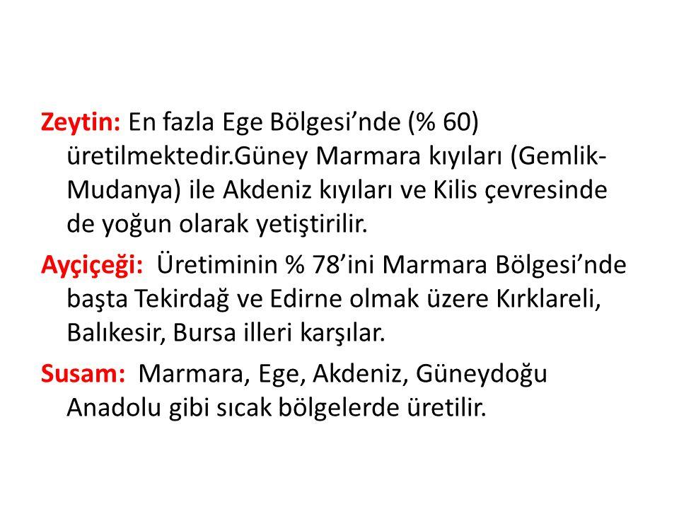 Zeytin: En fazla Ege Bölgesi'nde (% 60) üretilmektedir.Güney Marmara kıyıları (Gemlik- Mudanya) ile Akdeniz kıyıları ve Kilis çevresinde de yoğun olarak yetiştirilir.