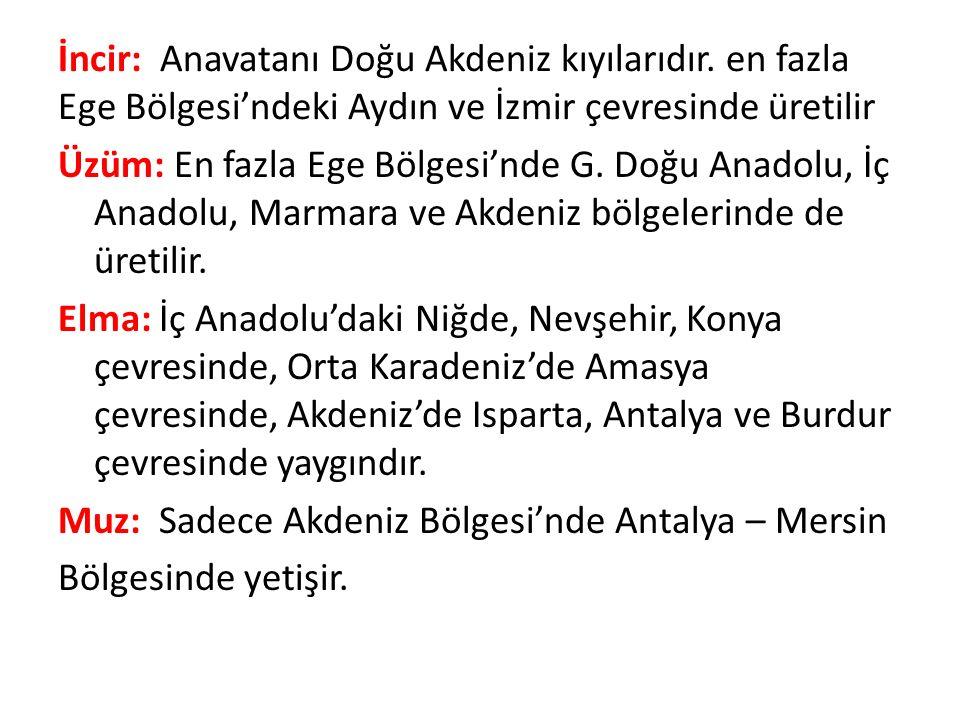 Kayısı: Kayısı üretimi en fazla Malatya, Elazığ, Konya, Ankara ve İzmir illerinde yapılır.