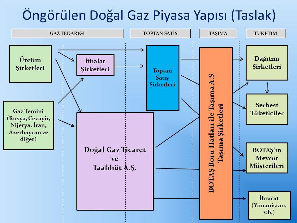 Gaz Temini (Rusya, Cezayir, Nijerya, İran, Azerbaycan ve diğer) Üretim Şirketleri Doğal Gaz Ticaret ve Taahhüt A.Ş.