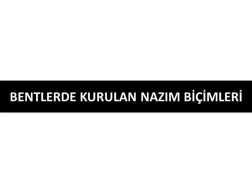 BENTLERDE KURULAN NAZIM BİÇİMLERİ
