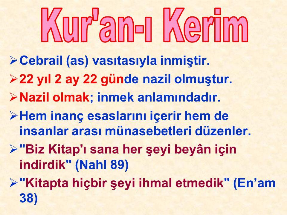  Kur'an, Allah'ın indirdiği kitaptır. Tektir, bir tanedir.