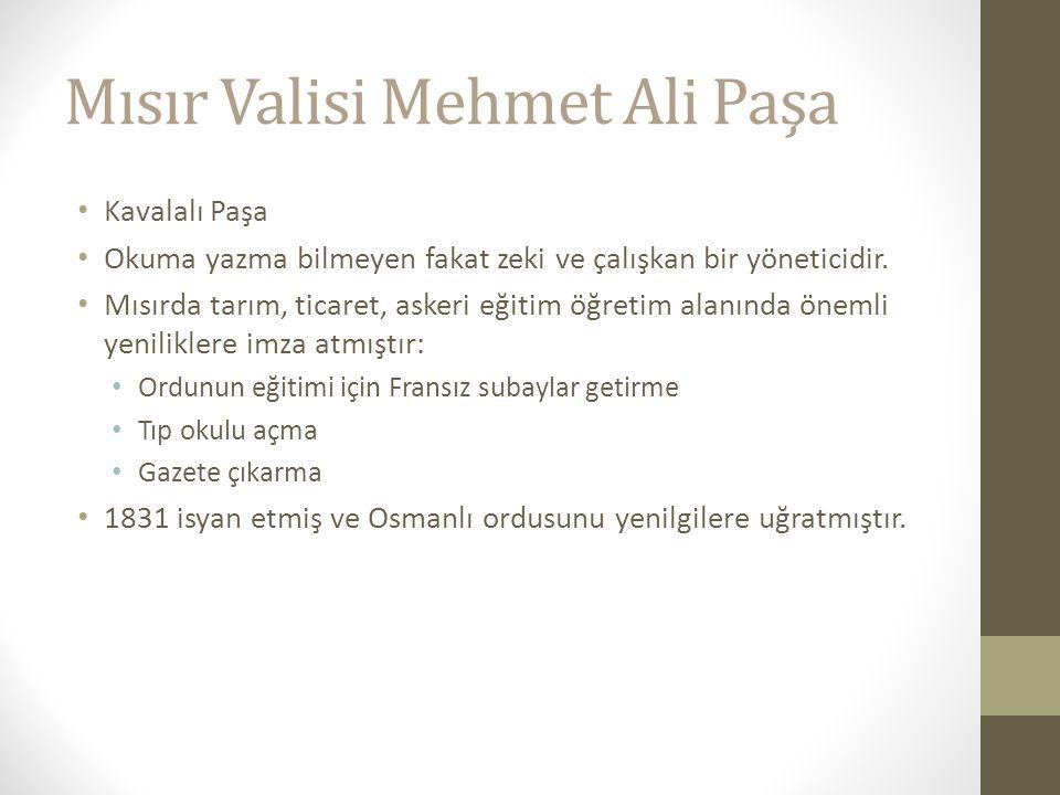 Mısır Valisi Mehmet Ali Paşa Kavalalı Paşa Okuma yazma bilmeyen fakat zeki ve çalışkan bir yöneticidir.