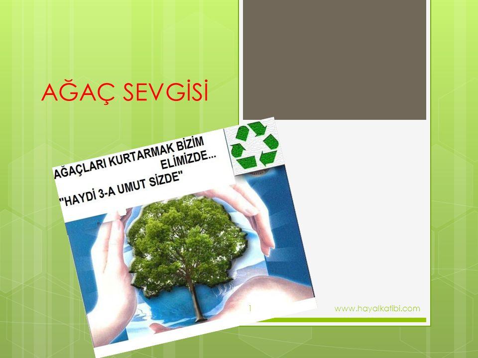 AĞAÇ SEVGİSİ www.hayalkatibi.com1