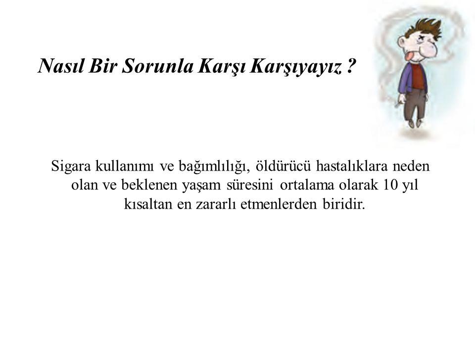 Sigara endüstrisinin özellikleri ve aldatıcı stratejiler, Sigara kontrol çalışmalarının yetersizliği nedeniyle Türkiye'de sigara önemli bir toplum sağlığı sorunu olarak önümüzde