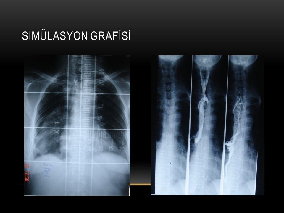 SIMÜLASYON GRAFİSİ