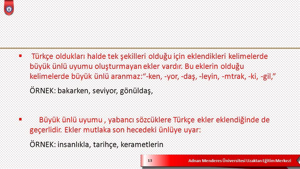 Adnan Menderes Üniversitesi Uzaktan Eğitim Merkezi 13  Türkçe oldukları halde tek şekilleri olduğu için eklendikleri kelimelerde büyük ünlü uyumu oluşturmayan ekler vardır.