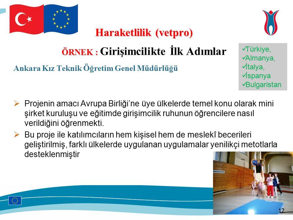 Haraketlilik (vetpro) ÖRNEK : ÖRNEK : Girişimcilikte İlk Adımlar Ankara Kız Teknik Öğretim Genel Müdürlüğü  Projenin amacı Avrupa Birliği'ne üye ülkelerde temel konu olarak mini şirket kuruluşu ve eğitimde girişimcilik ruhunun öğrencilere nasıl verildiğini öğrenmekti.