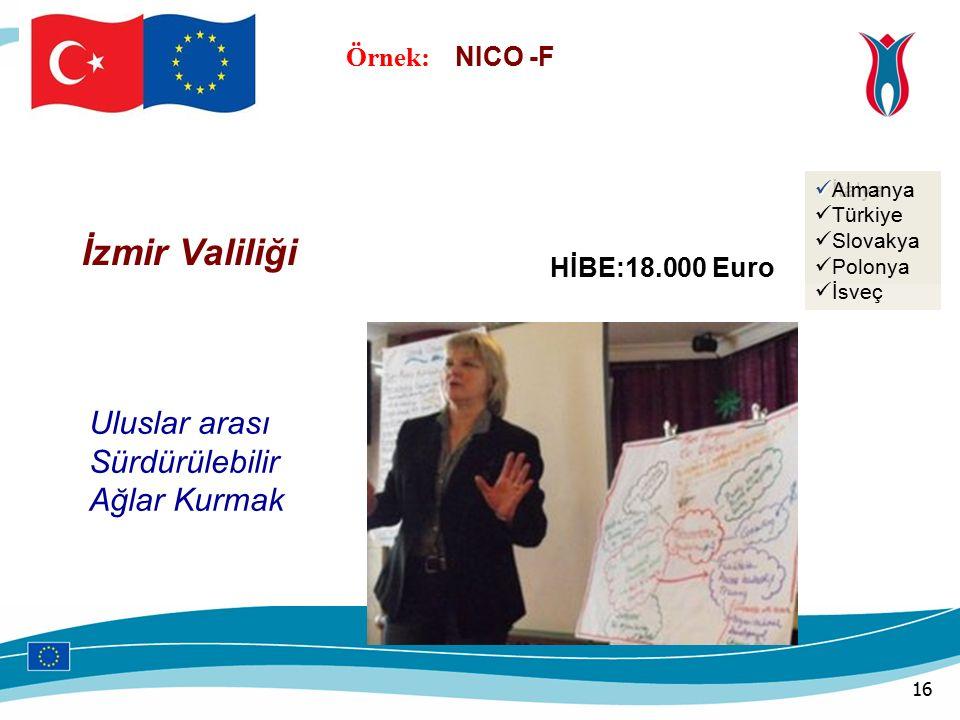 Örnek: NICO -F HİBE:18.000 Euro İzmir Valiliği Uluslar arası Sürdürülebilir Ağlar Kurmak İtalya Türkiye Slovakya Almanya Türkiye Slovakya Polonya İsveç 16