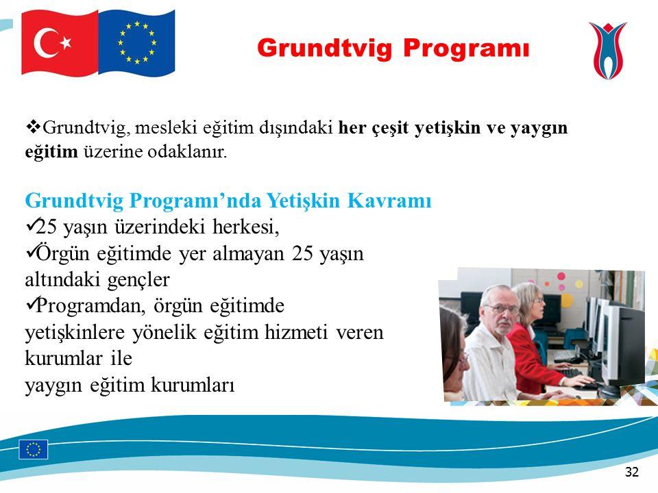 32  Grundtvig, mesleki eğitim dışındaki her çeşit yetişkin ve yaygın eğitim üzerine odaklanır.