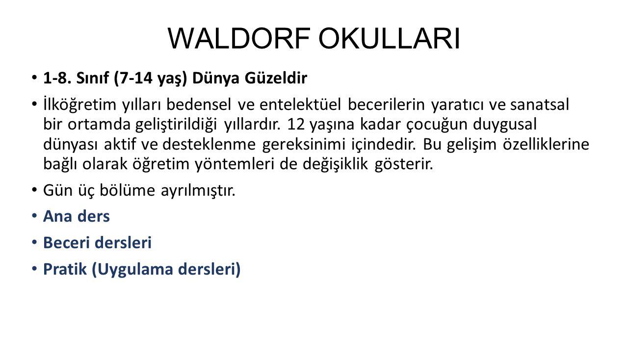 WALDORF OKULLARI 1-8.