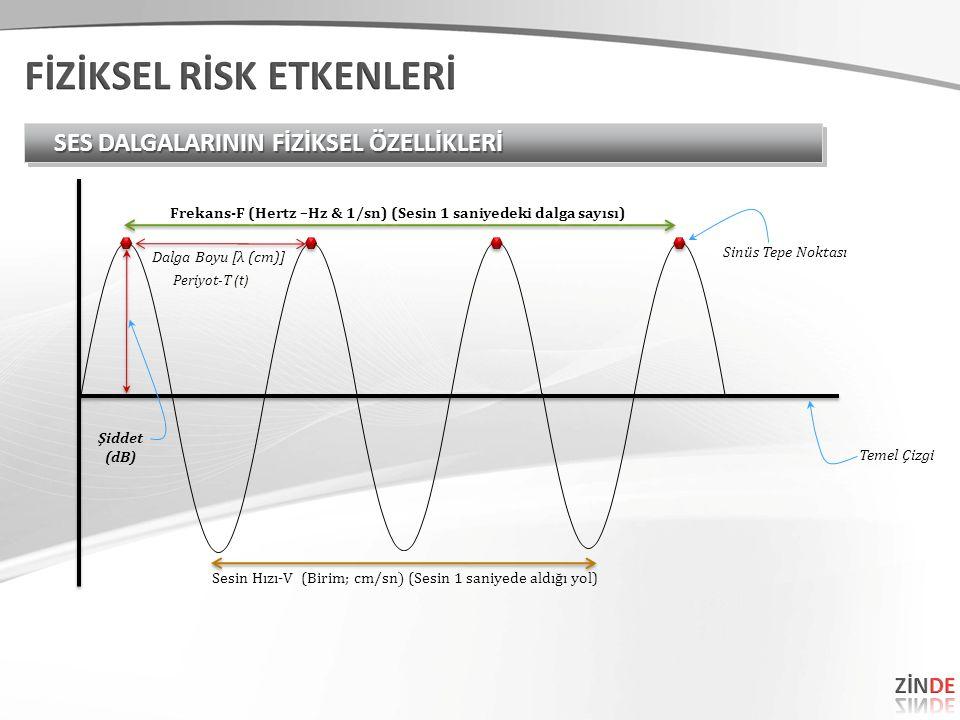 SES DALGALARININ FİZİKSEL ÖZELLİKLERİ Dalga Boyu [λ (cm)] Sinüs Tepe Noktası Temel Çizgi Şiddet (dB) Frekans-F (Hertz –Hz & 1/sn) (Sesin 1 saniyedeki dalga sayısı) Periyot-T (t) Sesin Hızı-V (Birim; c m/sn) (Sesin 1 saniyede aldığı yol)