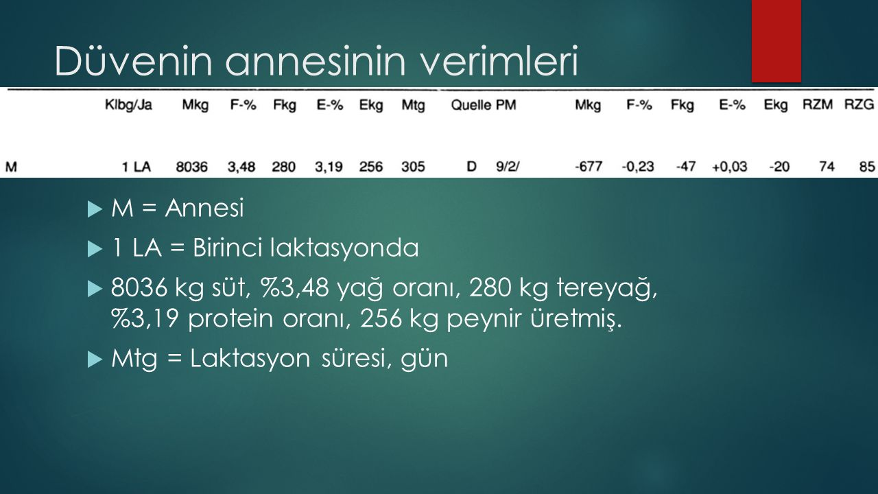 Düvenin annesinin verimleri  M = Annesi  1 LA = Birinci laktasyonda  8036 kg süt, %3,48 yağ oranı, 280 kg tereyağ, %3,19 protein oranı, 256 kg peyn