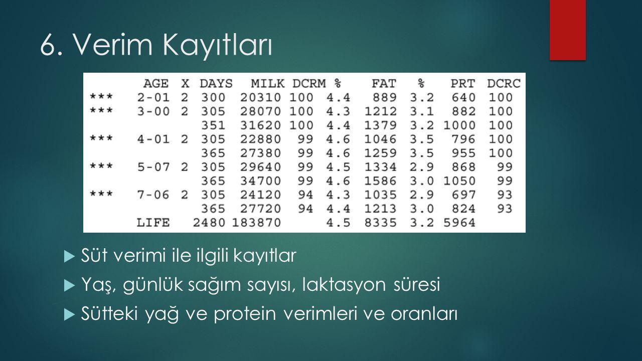 6. Verim Kayıtları  Süt verimi ile ilgili kayıtlar  Yaş, günlük sağım sayısı, laktasyon süresi  Sütteki yağ ve protein verimleri ve oranları