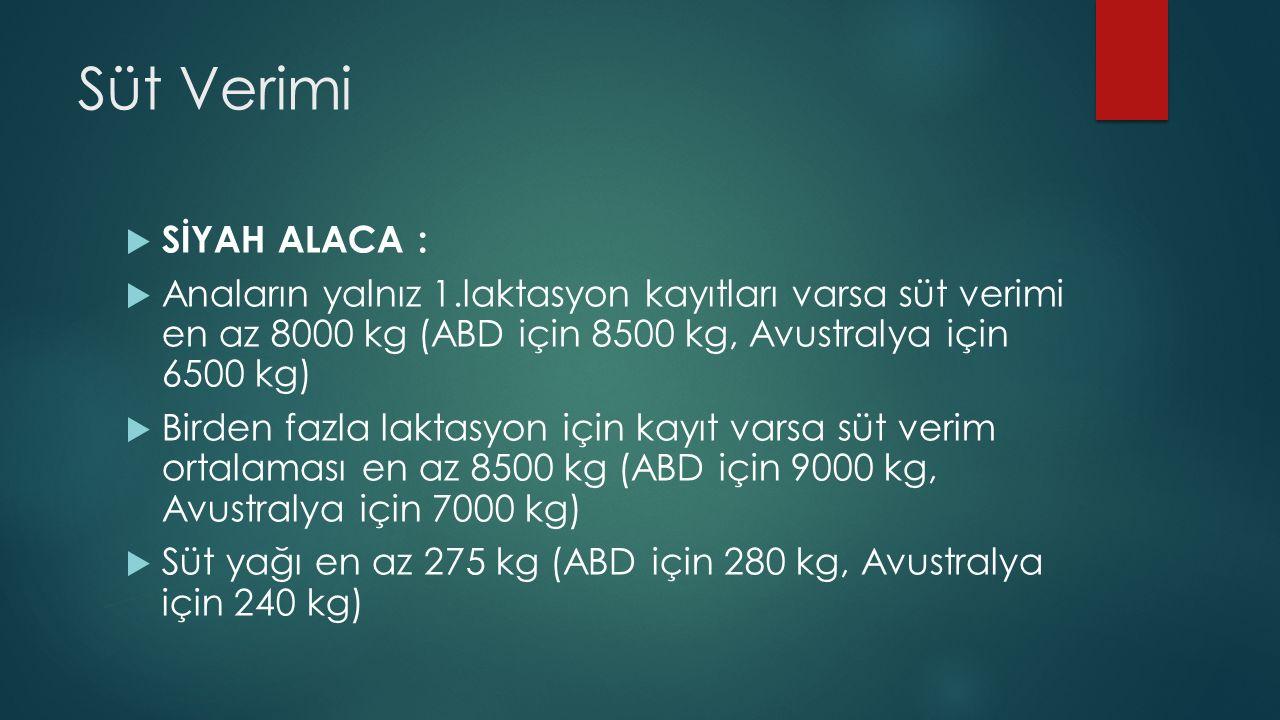 Süt Verimi  SİYAH ALACA :  Anaların yalnız 1.laktasyon kayıtları varsa süt verimi en az 8000 kg (ABD için 8500 kg, Avustralya için 6500 kg)  Birden fazla laktasyon için kayıt varsa süt verim ortalaması en az 8500 kg (ABD için 9000 kg, Avustralya için 7000 kg)  Süt yağı en az 275 kg (ABD için 280 kg, Avustralya için 240 kg)