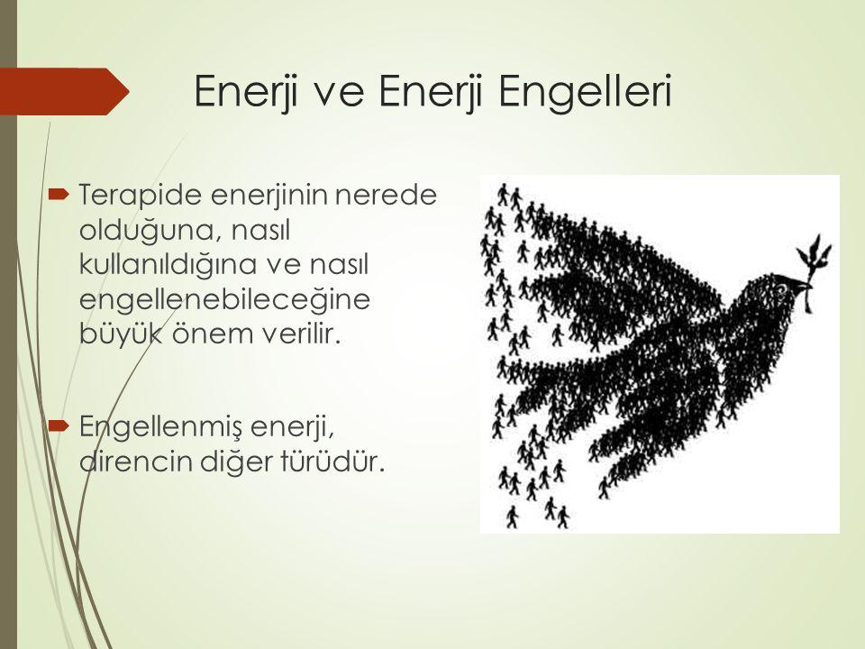 Enerji ve Enerji Engelleri  Terapide enerjinin nerede olduğuna, nasıl kullanıldığına ve nasıl engellenebileceğine büyük önem verilir.  Engellenmiş e