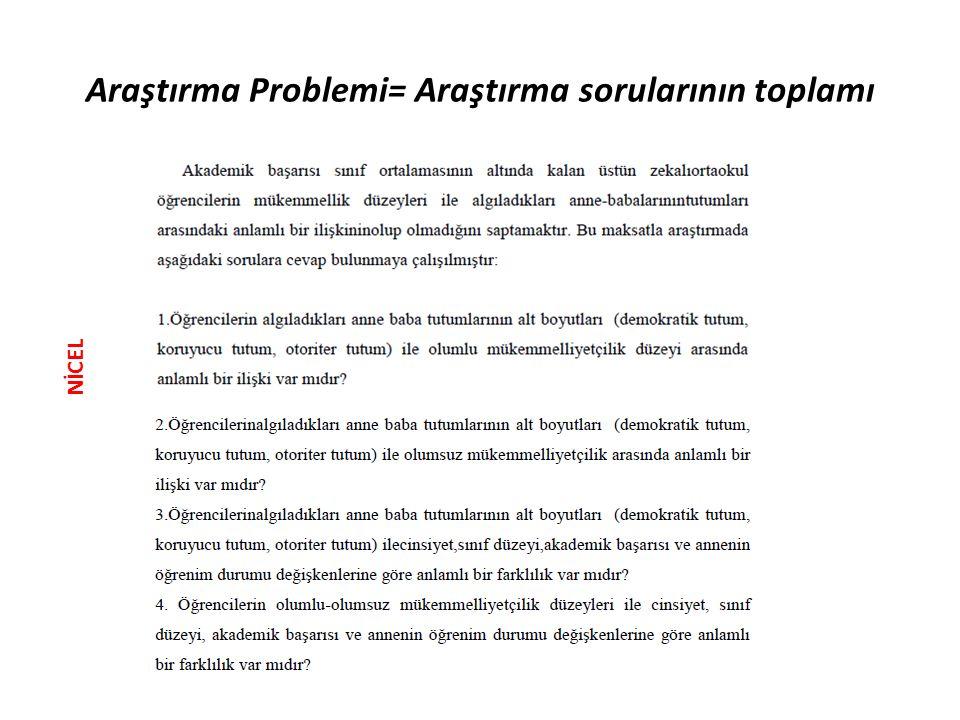 Araştırma Problemi= Araştırma sorularının toplamı NİCEL