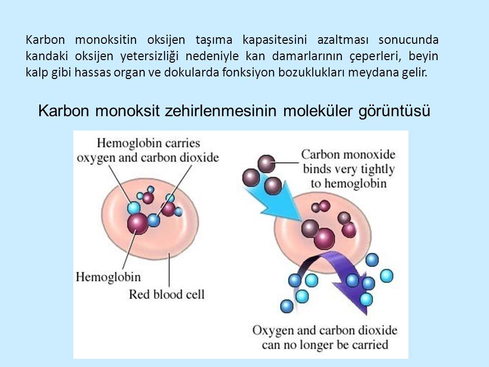 Karbon monoksit zehirlenmesinin moleküler görüntüsü Karbon monoksitin oksijen taşıma kapasitesini azaltması sonucunda kandaki oksijen yetersizliği ned
