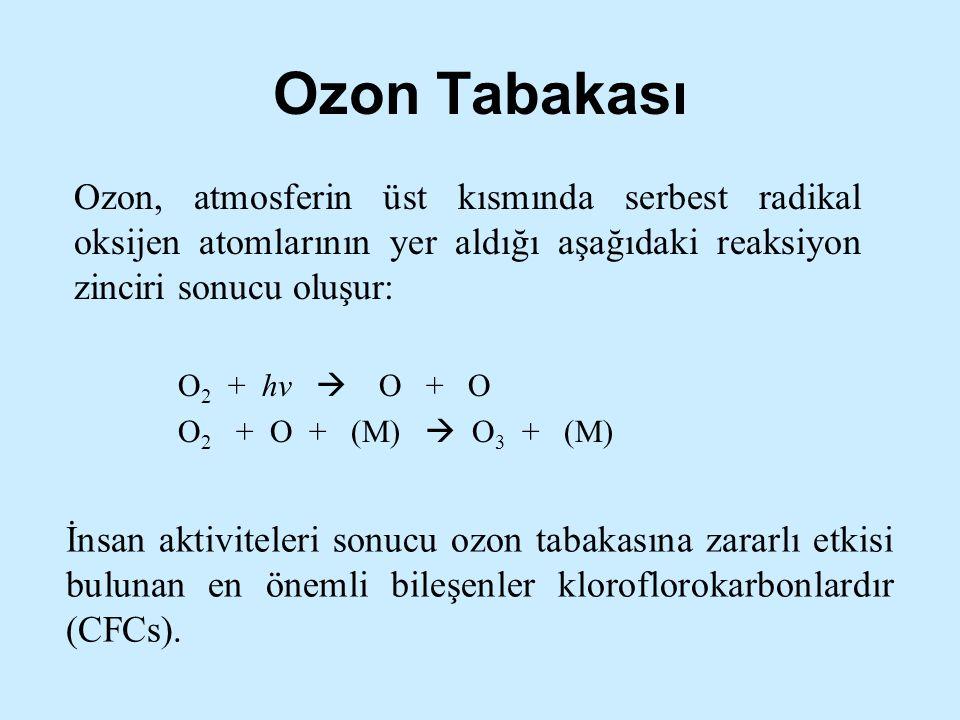 İnsan aktiviteleri sonucu ozon tabakasına zararlı etkisi bulunan en önemli bileşenler kloroflorokarbonlardır (CFCs). Ozon, atmosferin üst kısmında ser
