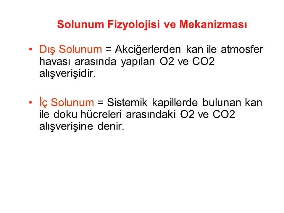 Solunum Fizyolojisi ve Mekanizması Dış Solunum = Akciğerlerden kan ile atmosfer havası arasında yapılan O2 ve CO2 alışverişidir. İç Solunum = Sistemik