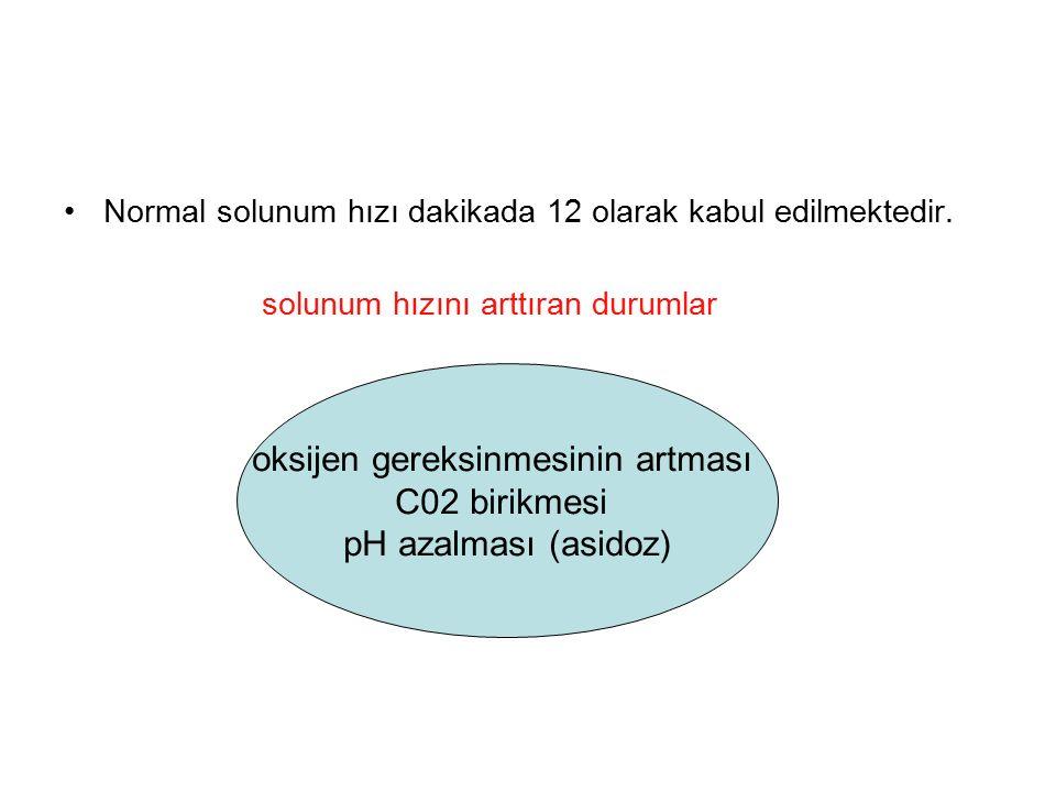 Normal solunum hızı dakikada 12 olarak kabul edilmektedir. solunum hızını arttıran durumlar oksijen gereksinmesinin artması C02 birikmesi pH azalması
