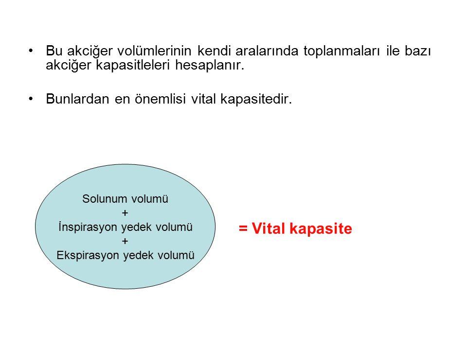 Bu akciğer volümlerinin kendi aralarında toplanmaları ile bazı akciğer kapasitleleri hesaplanır. Bunlardan en önemlisi vital kapasitedir. = Vital kapa