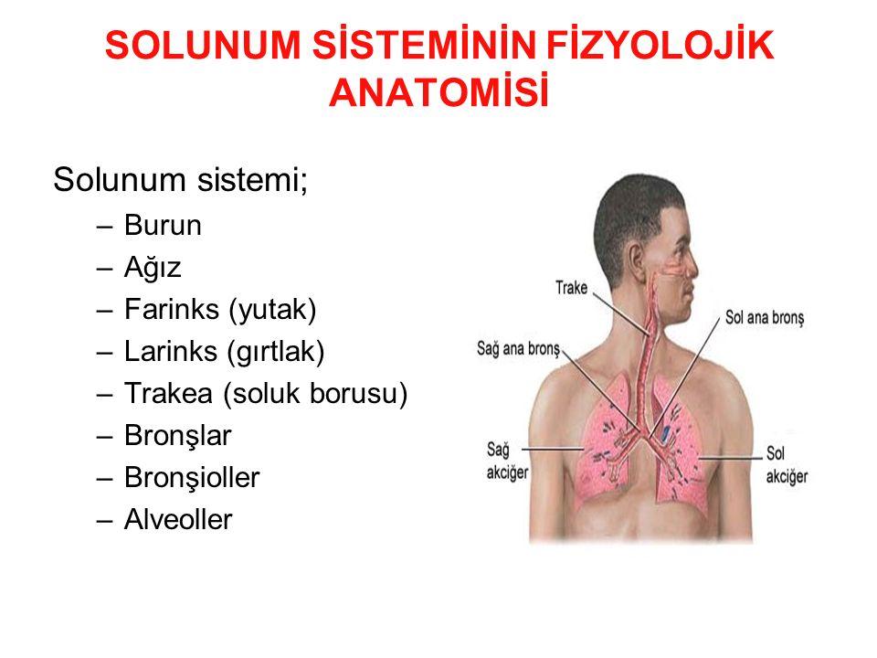 SOLUNUM SİSTEMİNİN FİZYOLOJİK ANATOMİSİ Solunum sistemi; –Burun –Ağız –Farinks (yutak) –Larinks (gırtlak) –Trakea (soluk borusu) –Bronşlar –Bronşiolle
