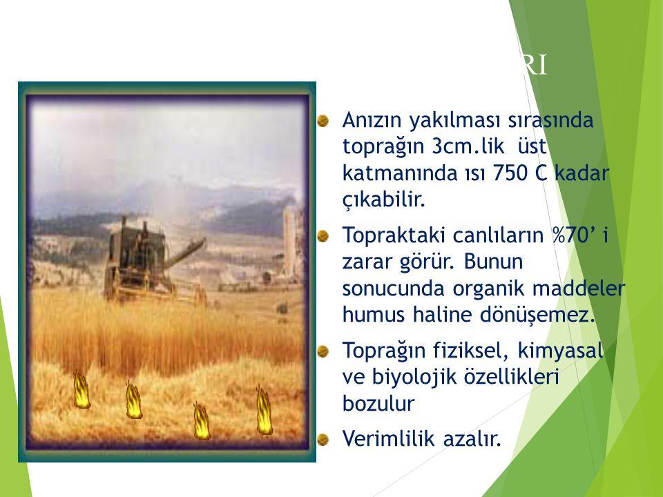 Anızın yakılması sırasında toprağın 3cm.lik üst katmanında ısı 750 C kadar çıkabilir.