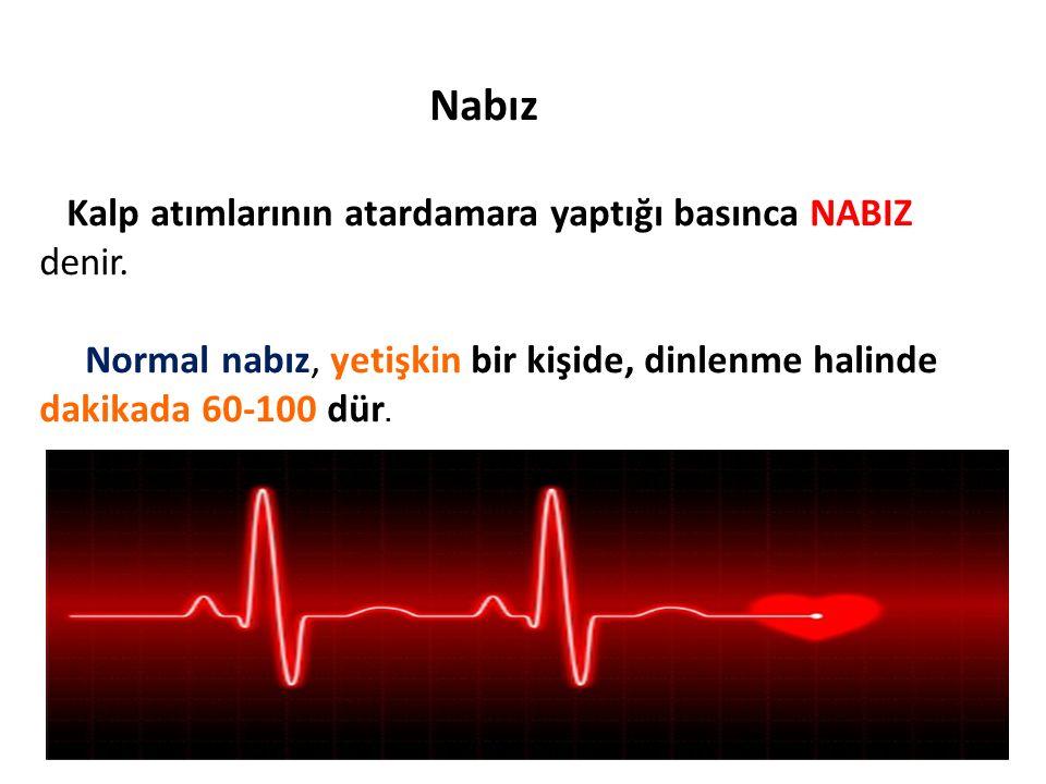 Nabız Kalp atımlarının atardamara yaptığı basınca NABIZ denir. Normal nabız, yetişkin bir kişide, dinlenme halinde dakikada 60-100 dür.