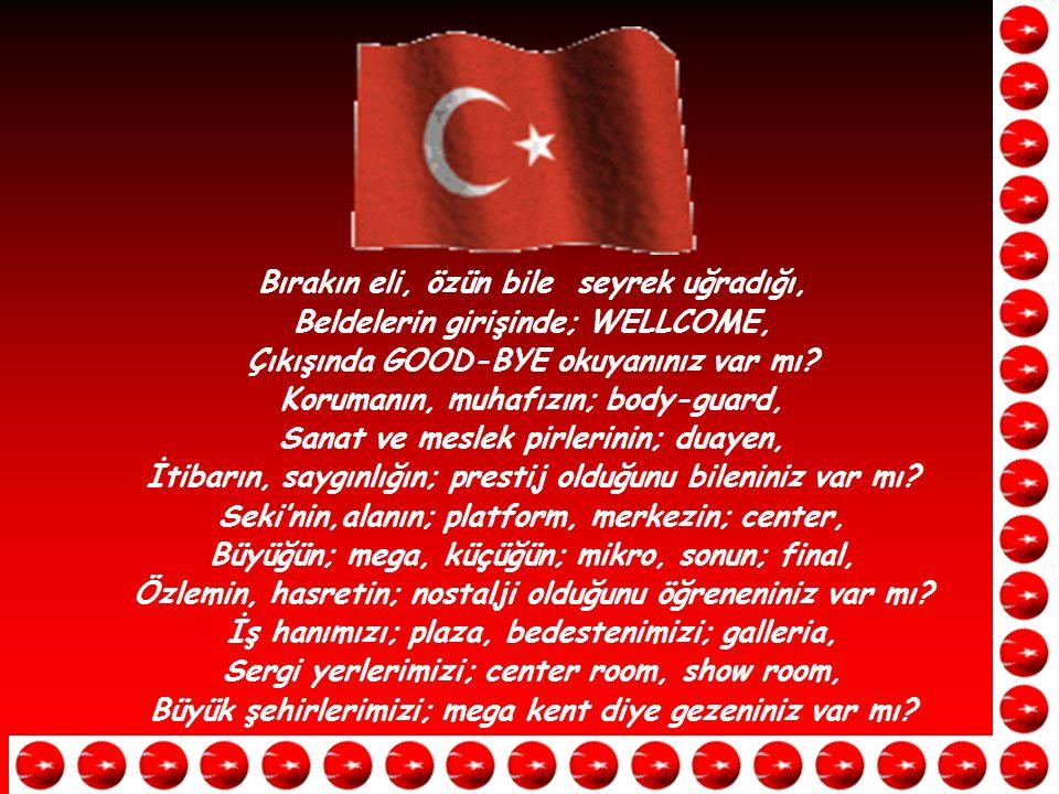 Nutkum tutuldu, şaşırdım,merak ettim, Dolandığınız yerlerdeki Türkçe olmayan isimlere, Gördüklerine, duyduklarına üzüleniniz var mı.
