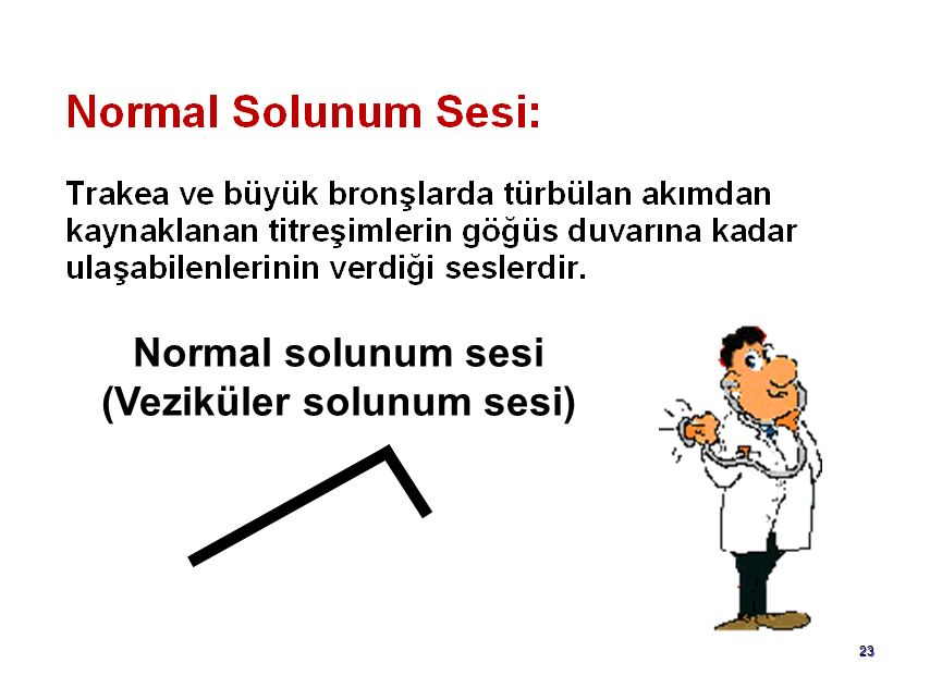22 Normal solunum sesleri Trakeal solunum sesi Bronşial solunum sesi Larinx, suprasternal çukur, 6.