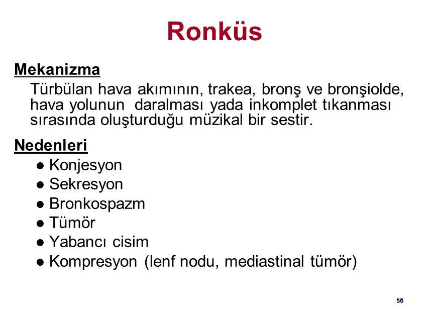 AC bazallerinde duyulan İnspiratuar raller Kronik Bronşit   İnsp.