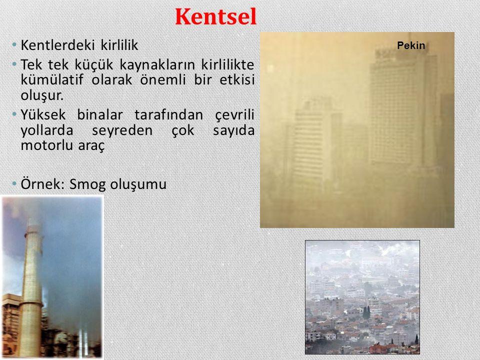 Kentsel Kentlerdeki kirlilik Tek tek küçük kaynakların kirlilikte kümülatif olarak önemli bir etkisi oluşur. Yüksek binalar tarafından çevrili yollard