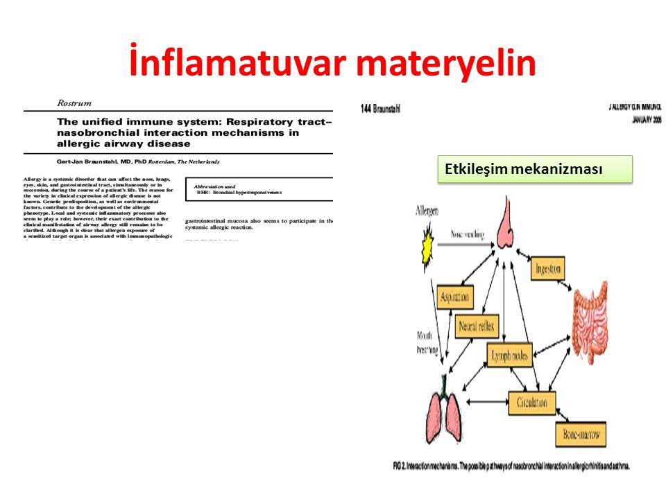 İnflamatuvar materyelin Etkileşim mekanizması